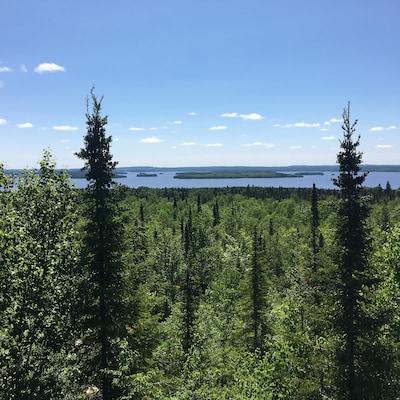 Une vue sur un lac et la forêt boréale.