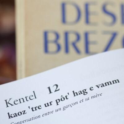 Photo d'une page d'un livre sur laquelle est écrit une leçon en breton.