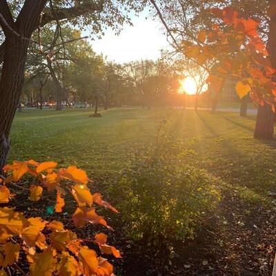 Un lever du soleil sur la ville de Regina en automne