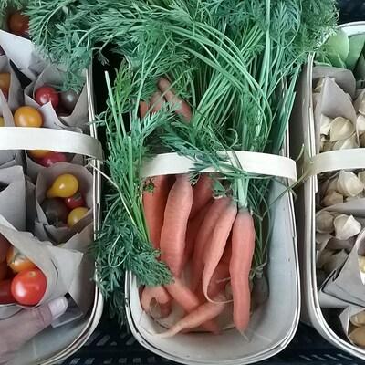 Des tomates, carottes et cerises de terre