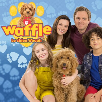 Waffle : le chien waouh