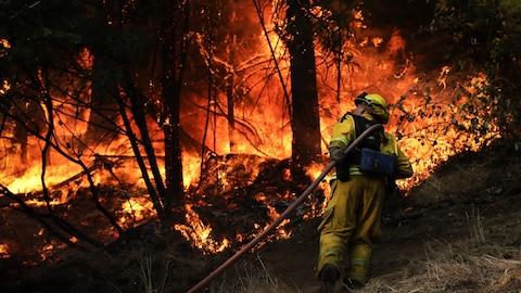 Un pompier transportant un boyau se déplace dans un brasier, le long de l'Autoroute 29 près de Calistoga, en Californie,le 13 octobre 2013
