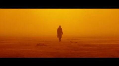 Image du film Blade Runner 2049. La silhouette de dos de K, interprété par l'acteur Ryan Gosling, s'éloigne dans un espace apocalyptique rouge orangée.