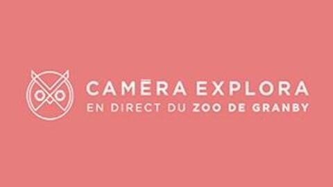Caméra Explora est de retour pour une deuxième année !