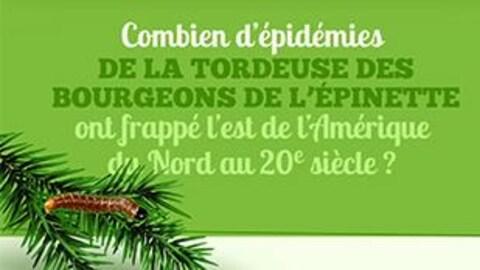 Apprenez-en plus sur le cycle d'épidémies de la tordeuse des bourgeons de l'épinette.