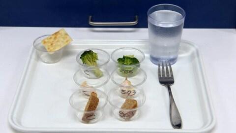 Un plateau sur lequel sont posés une fourchette, un verre d'eau, un craquelin et des échantillons de brocoli, de poulet et de pain.