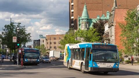 Des autobus de la STM sur la rue Sherbrooke.