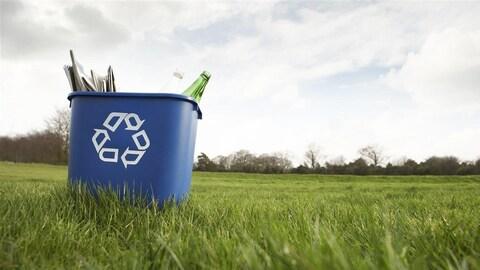 Un bac de recyclage déposé sur du gazon