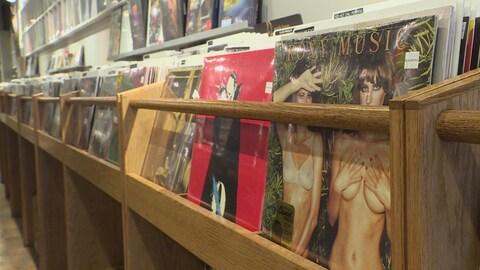 Des pochettes de disques vinyle dans un présentoir, chez un disquaire.