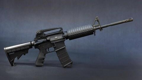 La plateforme AR-15 privilégiée par les corps de police a été utilisée dans la plupart des grandes tueries aux États-Unis (Parkland, Las Vegas, Orlando, San Bernardino, Newtown, Aurora...).