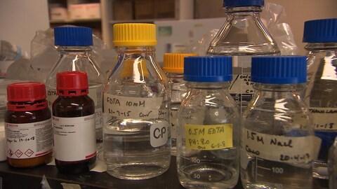 Des bouteilles transparentes contenant des composés chimiques sont déposées sur une tablette dans un laboratoire de recherche.