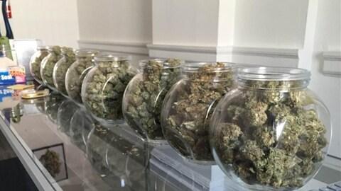 Cannabis Culture a ouvert un dispensaire de marijuana thérapeutique à Toronto en août.