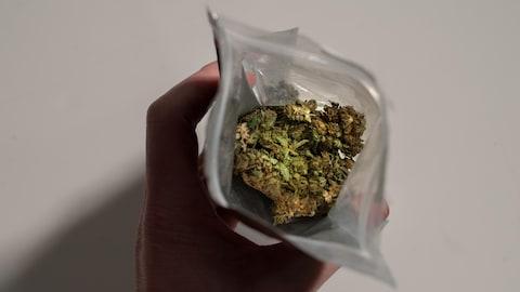 Gros plan d'un paquet de marijuana