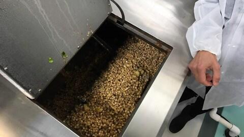 Un employé de Micron Waste Technologies démontre le cannavore.