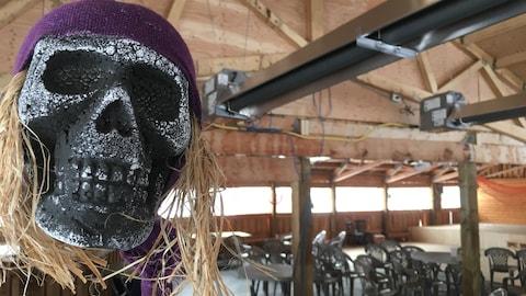 Un crâne de squelette déguisé en pirate surveille une salle de spectacle vide.