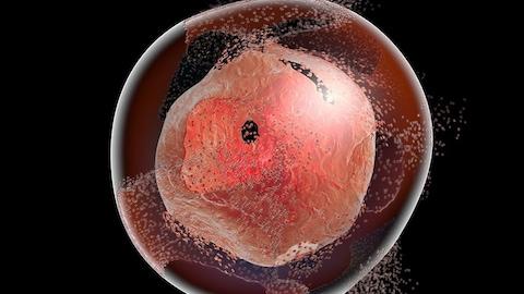 Représentation artistique du processus de destruction cellulaire.