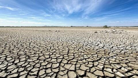 Des sols craquelés par la sécheresse.