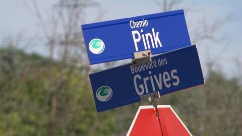 Une pancarte indiquant le chemin Pink. (Archives)