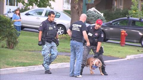 Un policier tient en laisse un chien muni d'une muselière.