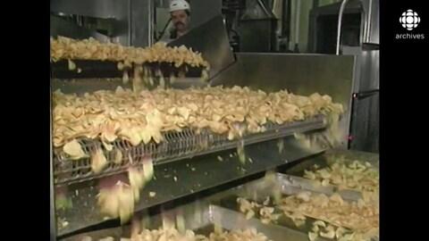 Chips sur un convoyeur, dans une usine.