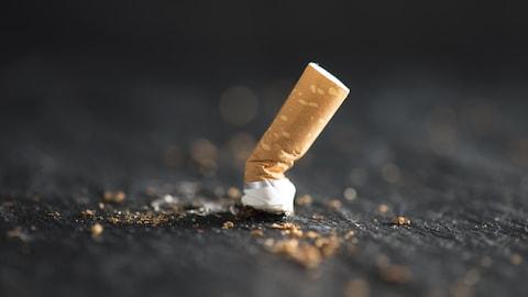 Une cigarette écrasée.