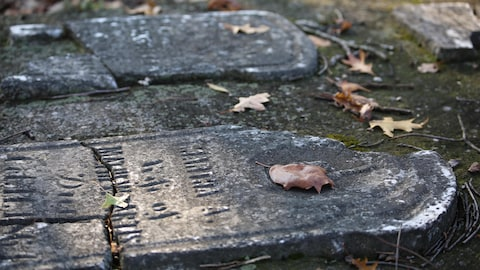 Gros plan sur une pierre tombale couchée par terre, craquée et avec des feuilles et des brindilles dessus.