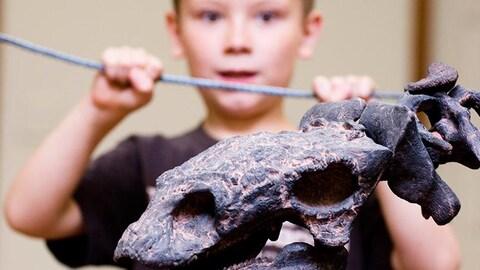 Un enfant avec un squelette de dinosaure dans les mains.