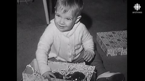 Jeune enfant qui ouvre une boîte qui contient un gros chocolat.