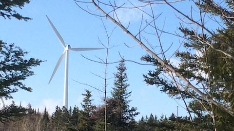 Éolienne à Matane