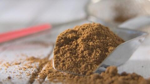 De la farine de grillons