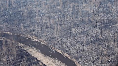 Photo d'archives datant de mai 2016 montrant l'ampleur de la destruction dans la région de Fort McMurray à la suite des feux de forêt.