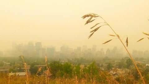 Vue sur le centre-ville de Calgary, dont on voit à peine les bâtisses en raison de la fumée.