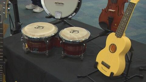 La Financière Sun Life a fait le don de 150 instruments de musique aux bibliothèques publiques d'Halifax.