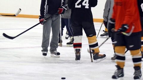 Des joueurs sont sur une patinoire