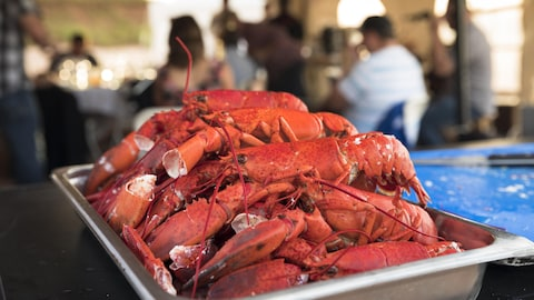 Des homards de Charlottetown, à l'Île-du-Prince-Édouard, sur une table attendent d'être servis à des convives.