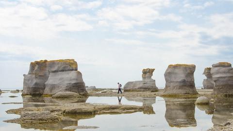 L'île Niapiskau du parc national de l'archipel-de-Mingan