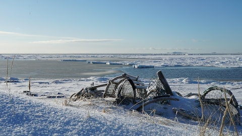 Une cage à homard aux Îles-de-la-Madeleine sous la neige de février. On voit de la glace dans le golfe du Saint-Laurent à l'arrière.