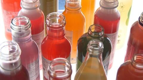 Des bouteilles de kombucha de différentes couleurs.