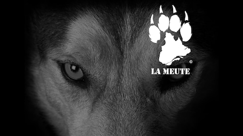Le logo de La Meute