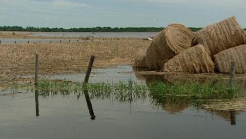 Le plan d'eau d'un lac dans le secteur des Lacs Quill avec des bottes de foin submergées par l'eau..
