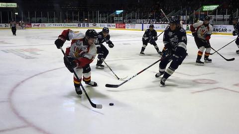 Deux joueurs se disputent une rondelle à l'avant-plan. Leurs coéquipiers surveillent la scène à l'arrière.
