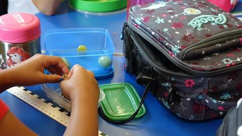 De plus en plus d'écoles ontariennes organisent des lunchs sans déchet.