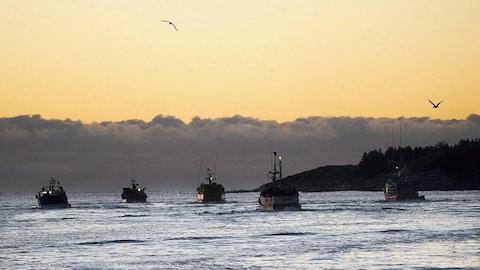 Un rapport critique la gestion des pêches du gouvernement Trudeau