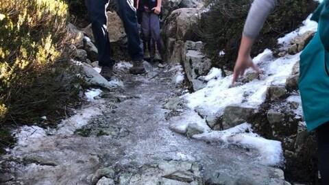 Trois personnes marchent sur un sentier glacé, en forêt.