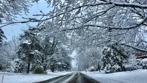 De la neige dans le paysage et sur une route