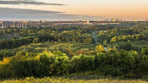 vue du parc avec une ville en arrière