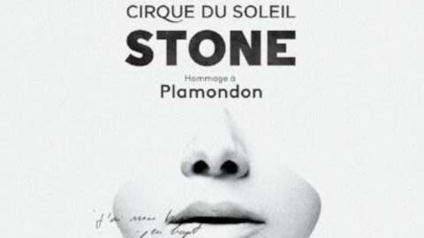 Pochette de l'album « Stone - Hommage à Plamondon »