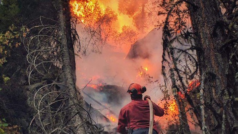 Un pompier, seul, arrose un immense brasier composé d'arbres.