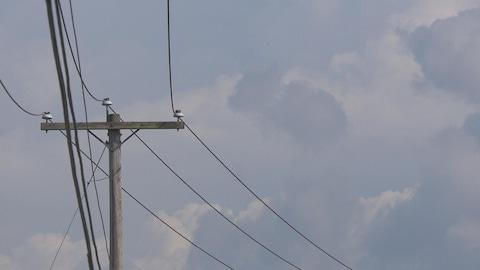 Ligne électrique sur un poteau en bois d'Hydro-Québec