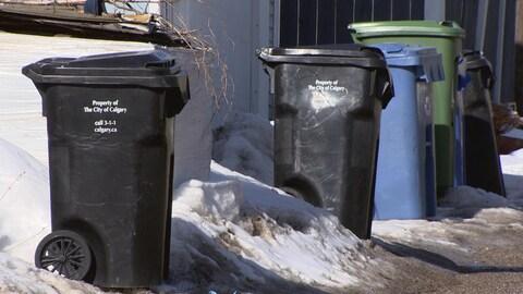 Une série de poubelles noires, bleues et vertes dans une contre-allée de Calgary.